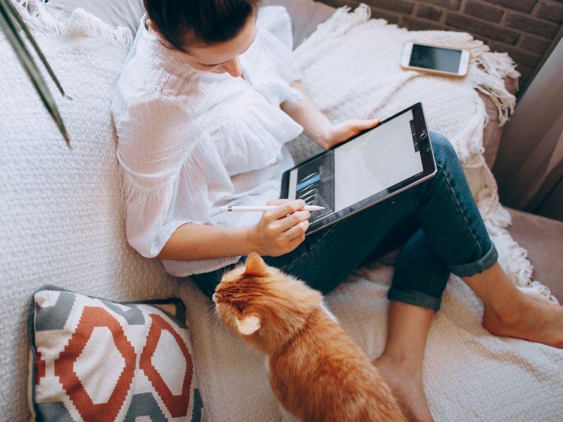 Frau sitzt auf dem Sofa und arbeitet mit ihrem Tablet, neben ihr sitzt eine orange-braune Katze.