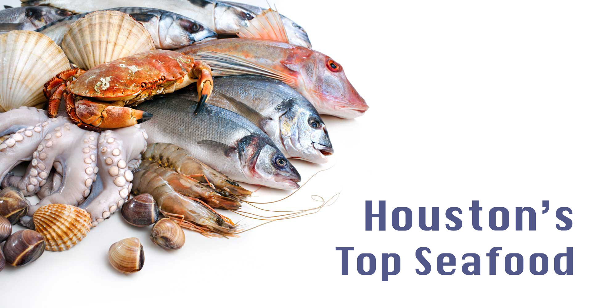 Don\'t Pull A Mussel Trying Out These Seafood Restaurants in Houston ...