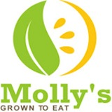 Molly's Salads Logo