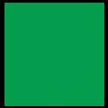 Tampa Pizza Company Logo