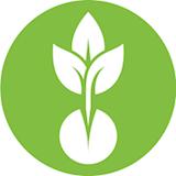 Green Seed Market Logo