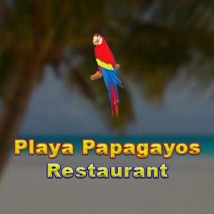 Playa Papagayos Logo