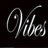 Vibe 2 Logo