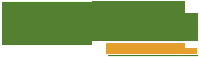 Buddha Thai Cuisine Logo