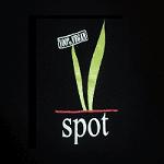 VSPOT - Park Slope Logo