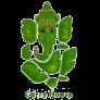 Curry House II Logo