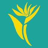 Noho's Hawaiian Cafe Logo