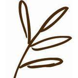 The Plant Cafe - Montgomery & Pine (FiDi) Logo