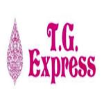 TG Express Logo