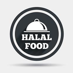 Halal Food Guys Logo
