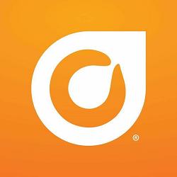 Orange Leaf Frozen Yogurt - Verona Logo