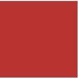 Carolina Ale House (Charlotte) Logo