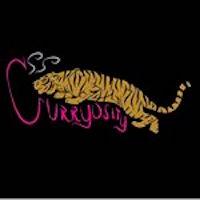 Curryosity (3023 Juniper St) Logo