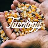 Tacology Logo
