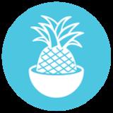 Playa Bowls (Villanova) Logo