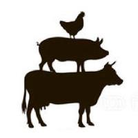 Kensington Fine Foods Logo
