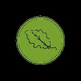 Vert Kitchen Logo