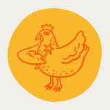 The Chicken Fairy Logo
