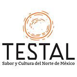 Testal Logo