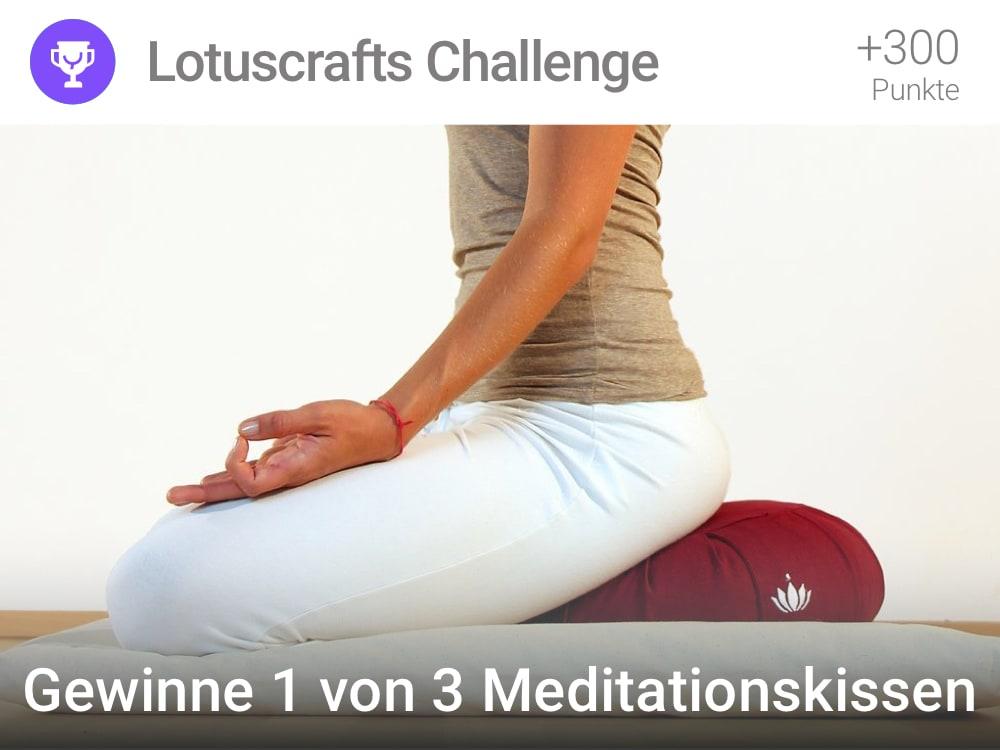 Lotuschrafts Challenge