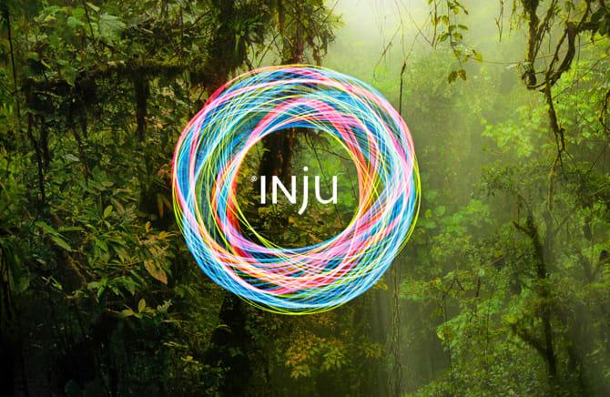 Banner Symbol of INJU