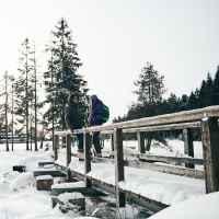 Winter strolls ©Frank Kretschmann/Christian Muster