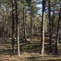 Imagefoto mit dem MADDOX GTX LO, Microadventure Naturdenkmäler