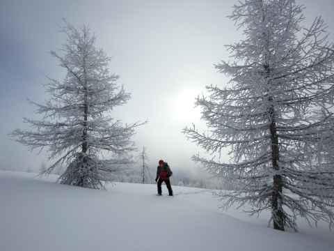 Schneeschuhtour zum Gamsstein, Tuxer Alpen, Tirol, Österreich.