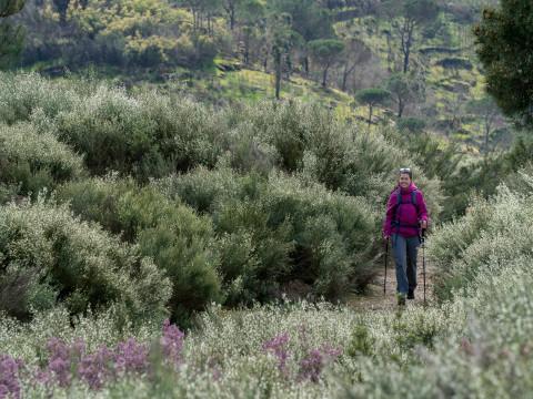Wanderszene bei  Mangualde, Viseu, Portugal.