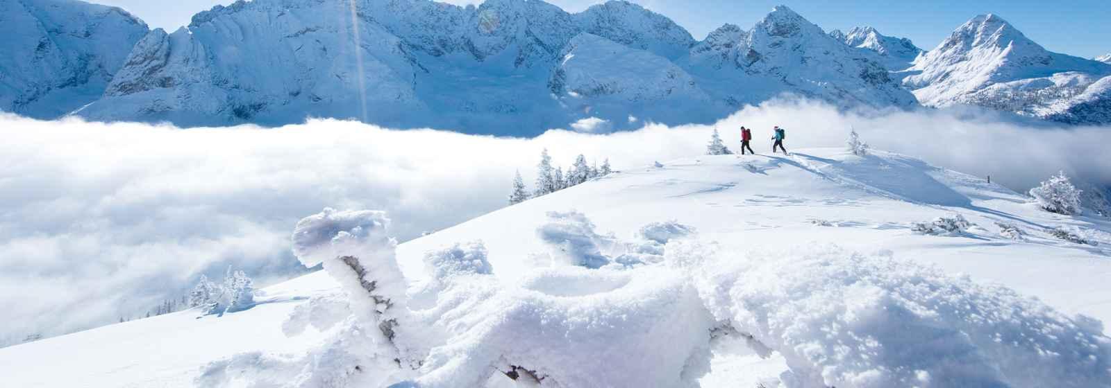 Schneeschuhtour zum Gatterl, Wetterstein Gebirge, Tirol, Österreich