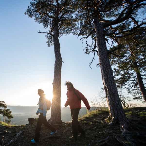 Amotan Eisklettern Erstbegehung Norwegen Rudi Hauser WI7+ / 8- 150m Winter