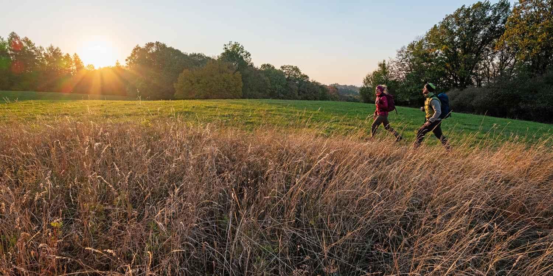 En voyage, en randonnée ou pour une promenade en forêt, le modèle PINTO LL LO vous accompagne sur tous les terrains. Très élégante, cette chaussure basse robuste en cuir pleine fleur est un modèle très adaptable, qui marque des points avec sa doublure intérieure en cuir. Pour adapter la chaussure aux terrains les plus variés, LOWA a choisi une semelle VIBRAM® TREK, qui se distingue particulièrement en moyenne montagne et en trek de difficulté modérée.