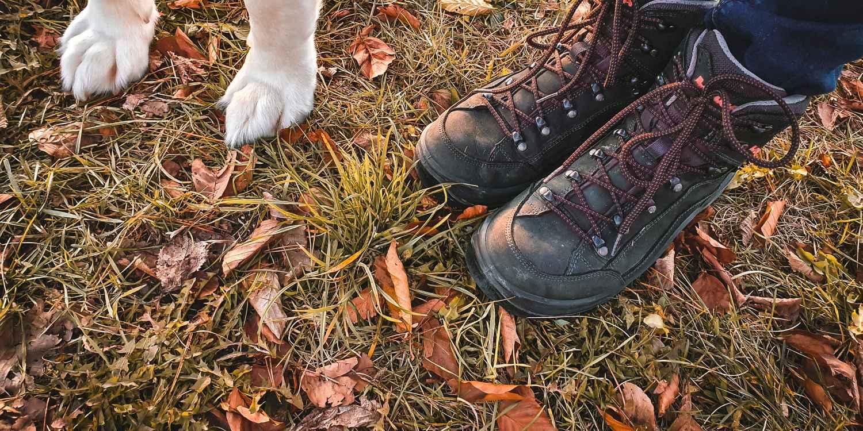 Imagefoto mit dem RENEGADE GTX MID Ws, Tipps für Gassigeher im Herbst