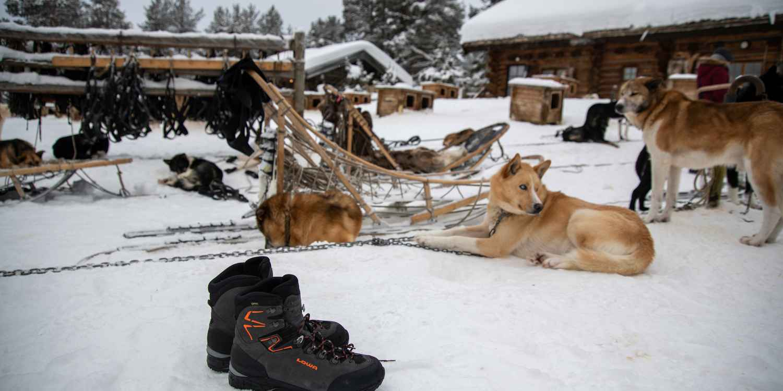 Als de boomtakken doorzakken onder de sneeuw en de wereld in een wit winterlandschap veranderen, kun je niet snel genoeg de natuur in. De BOSCO GTX is daarom uitgerust met een praktische rits voor gemakkelijk aan- en uittrekken. In combinatie met de materiaalmix van textiel en gladleer, een GORE-TEX Panda-membraan en talrijke functionele details is de schoen perfect voor de winter.