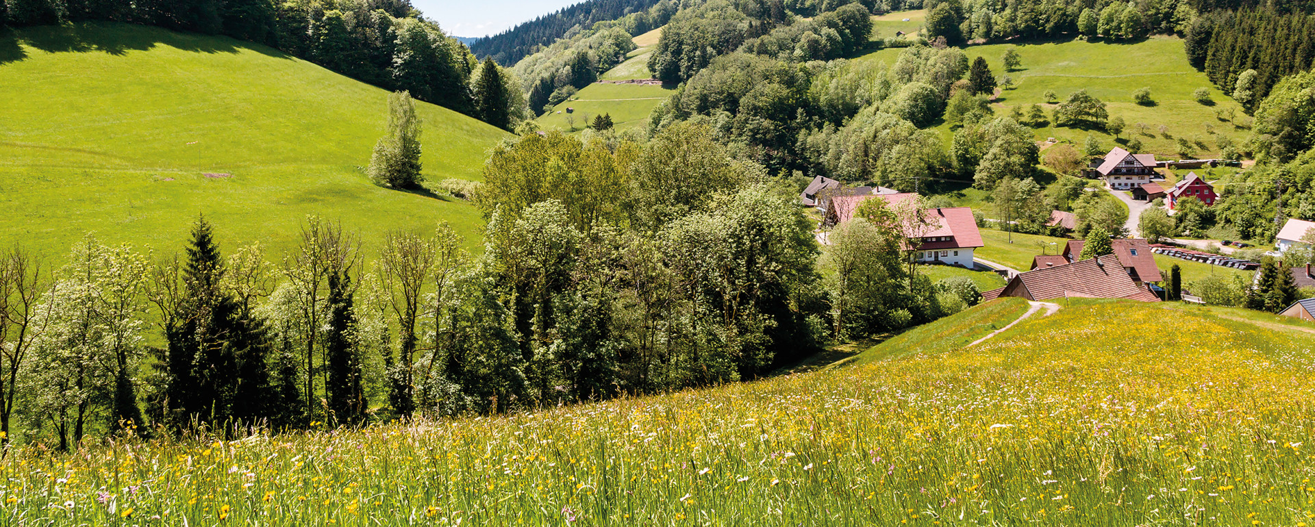 wiesensteig_2016-0729_interpoliert