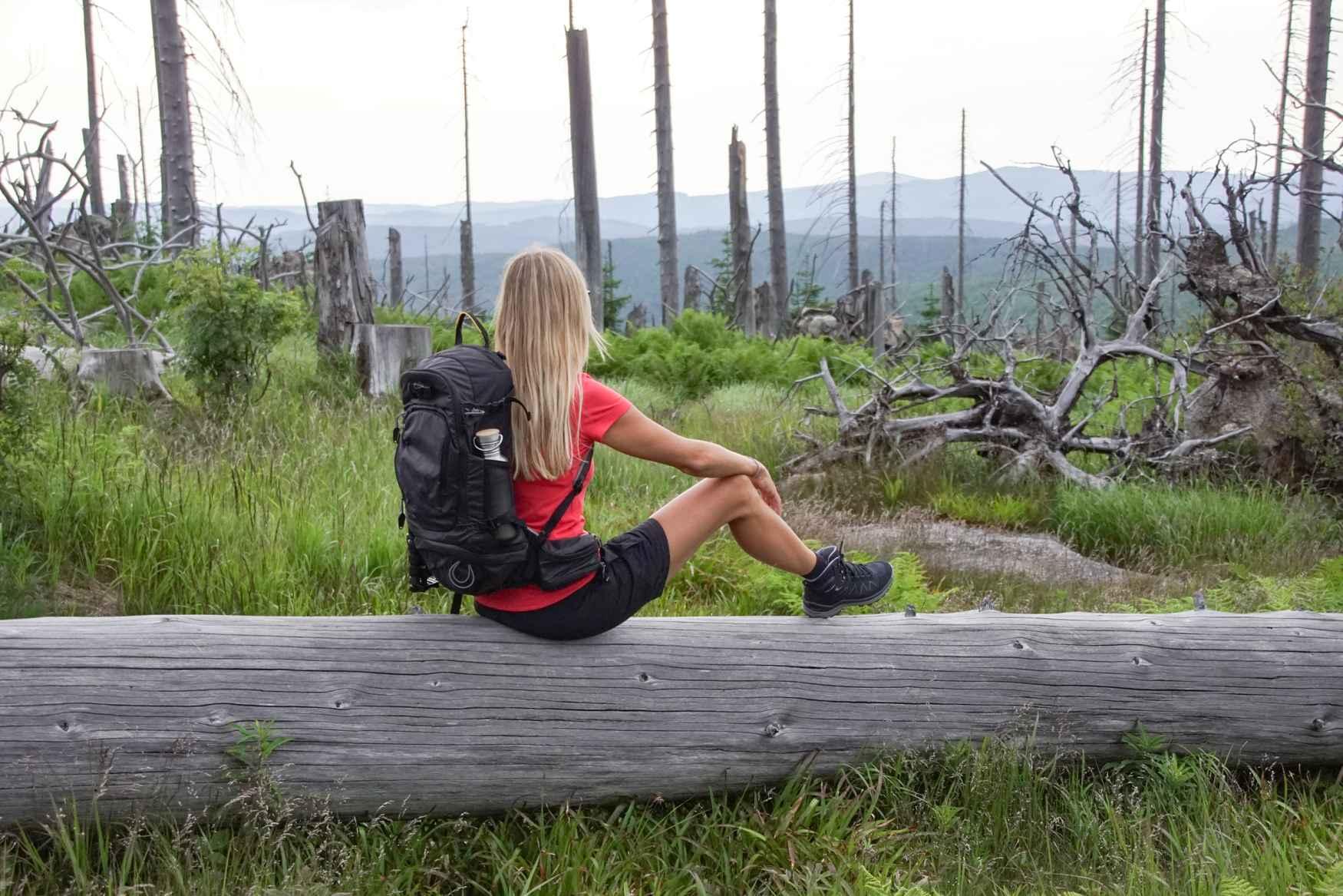 Wenn schickes Retro-Design auf anspruchsvolle Trekkingtouren trifft, dann handelt es sich um den PINTO LL MID Ws. Der speziell für die anatomischen Anforderungen von Frauenfüßen entwickelte Glattleder-Trekkingschuh erfüllt aber nicht nur modische Aspekte, sondern auch die Ansprüche an einen Schuh, der in freier Natur auf Schritt und Tritt Performance abliefern soll. Mit der VIBRAM®-TRAC-LITE-II-Sohle sind unterschiedliche Untergründe kein Problem. Zum Rundum-Wohlfühlen sorgt darüberhinaus das geschmeidige Innenfutter aus Leder.