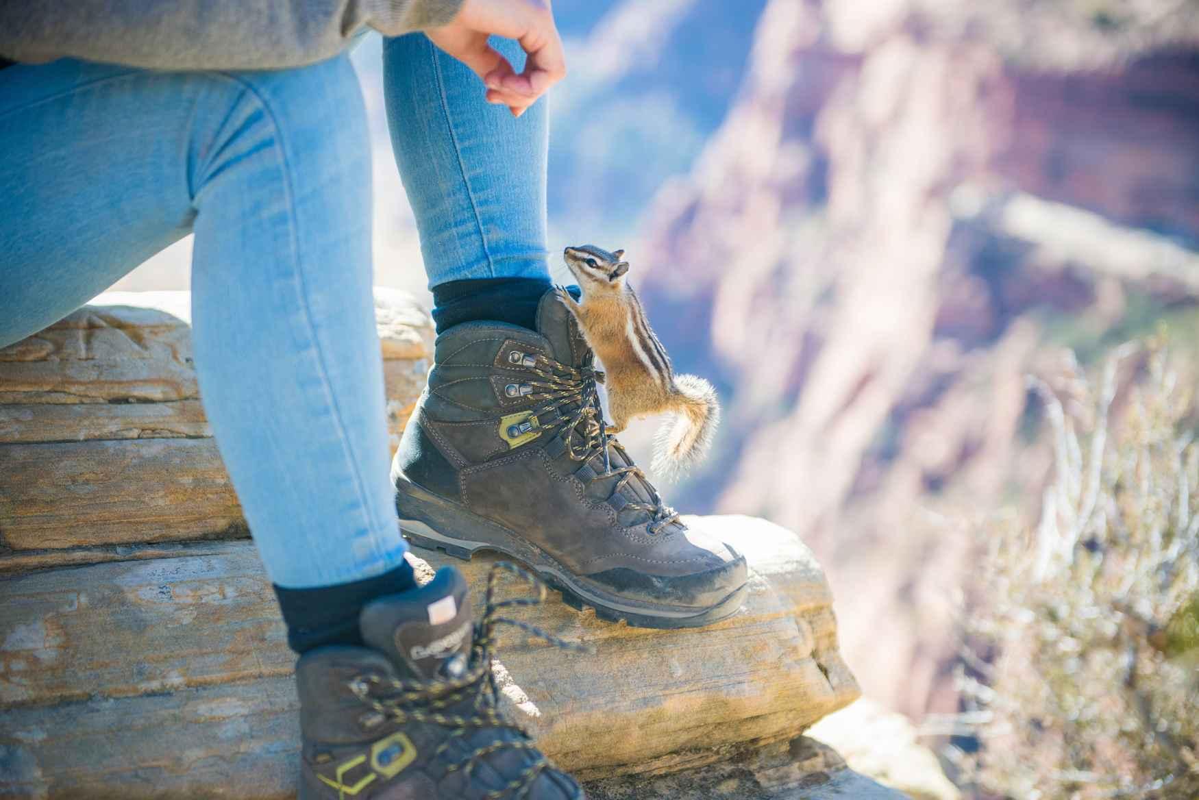 Meer lichtheid in het leven heeft nog nooit iemand pijn gedaan! De LADY LIGHT GTX van LOWA levert daar een belangrijke bijdrage aan. De technisch volwassen en aanpasbare damestrekkingschoen van slijtvast nubuckleren bovenmateriaal is ook nog eens behoorlijk chic. De waterdichte en ademende GORE-TEX voering zorgt voor een optimaal klimaat in de schoen en de VIBRAM® TRAC-LITE II-zool voor plezier op verschillende oppervlakken. De schoen is zelfs herzoolbaar als dat nodig is. Overigens: De hele schoen is speciaal afgestemd op de vrouwelijke anatomie.