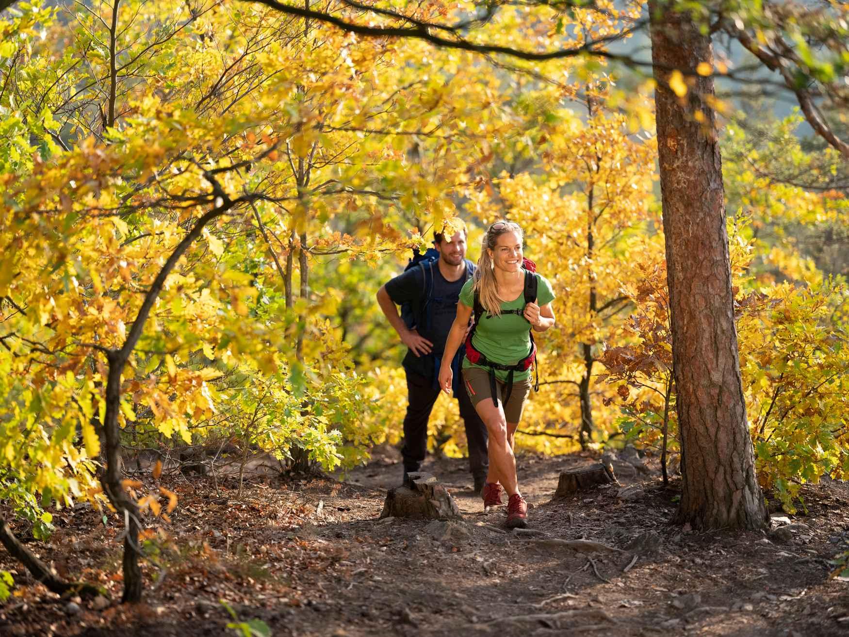 Een schoen voor een wandeling? Of toch liever een schoen voor een outdoorervaring? Soms wil je helemaal niet kiezen. Het is dus maar goed dat de op retro geïnspireerde gladleren PINTO GTX LO gewoon altijd kan worden gedragen. Het maakt niet uit op wat voor oppervlak, het maakt niet uit wat voor weer het is: De veelzijdige VIBRAM® TREK-zool en het geïntegreerde GORE-TEX-membraan zijn altijd klaar voor actie – of het nu in het bos is, in de uitlopers van de Alpen of zelfs op middelzware tochten.