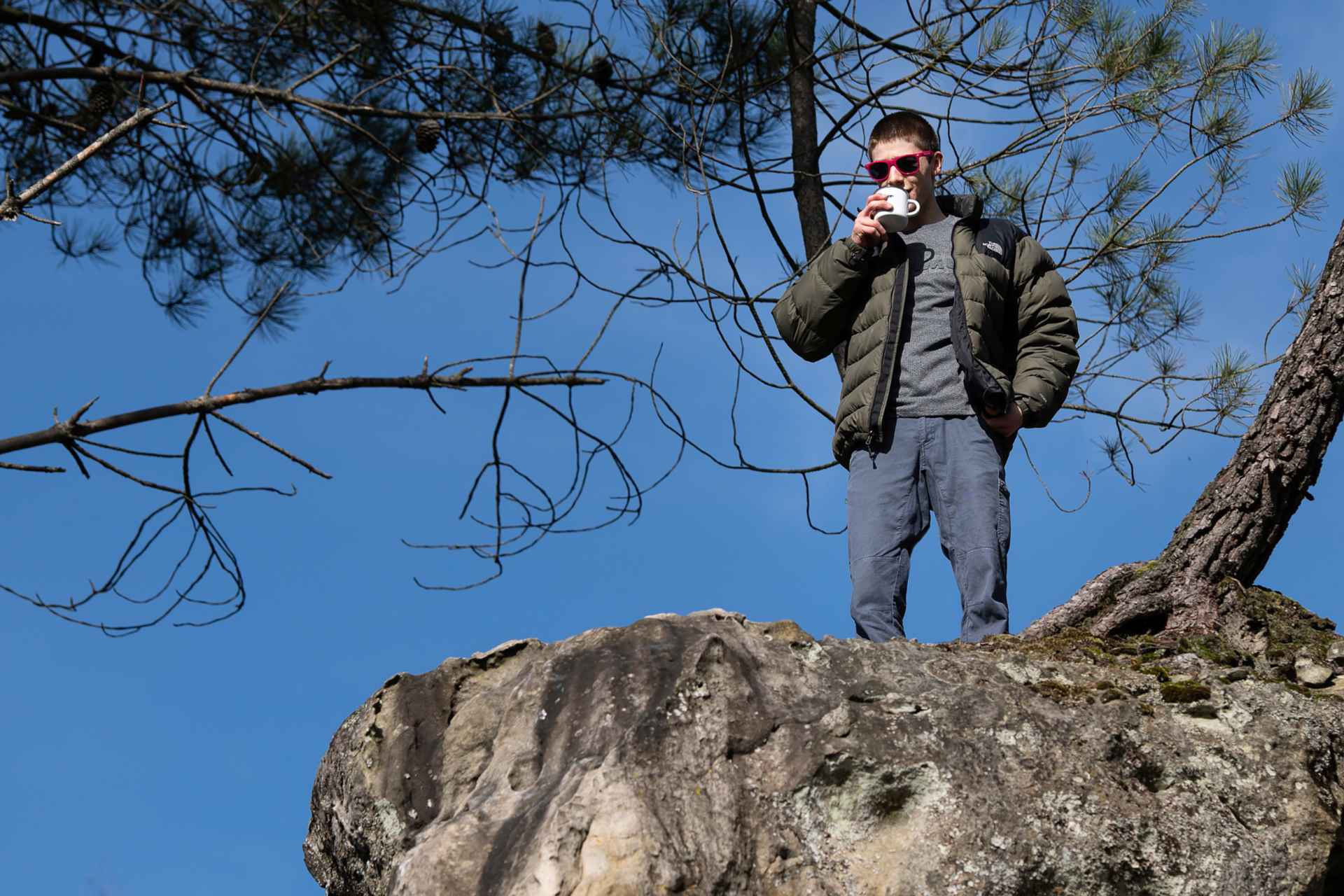 Leander Carmanns Fontainebleau
