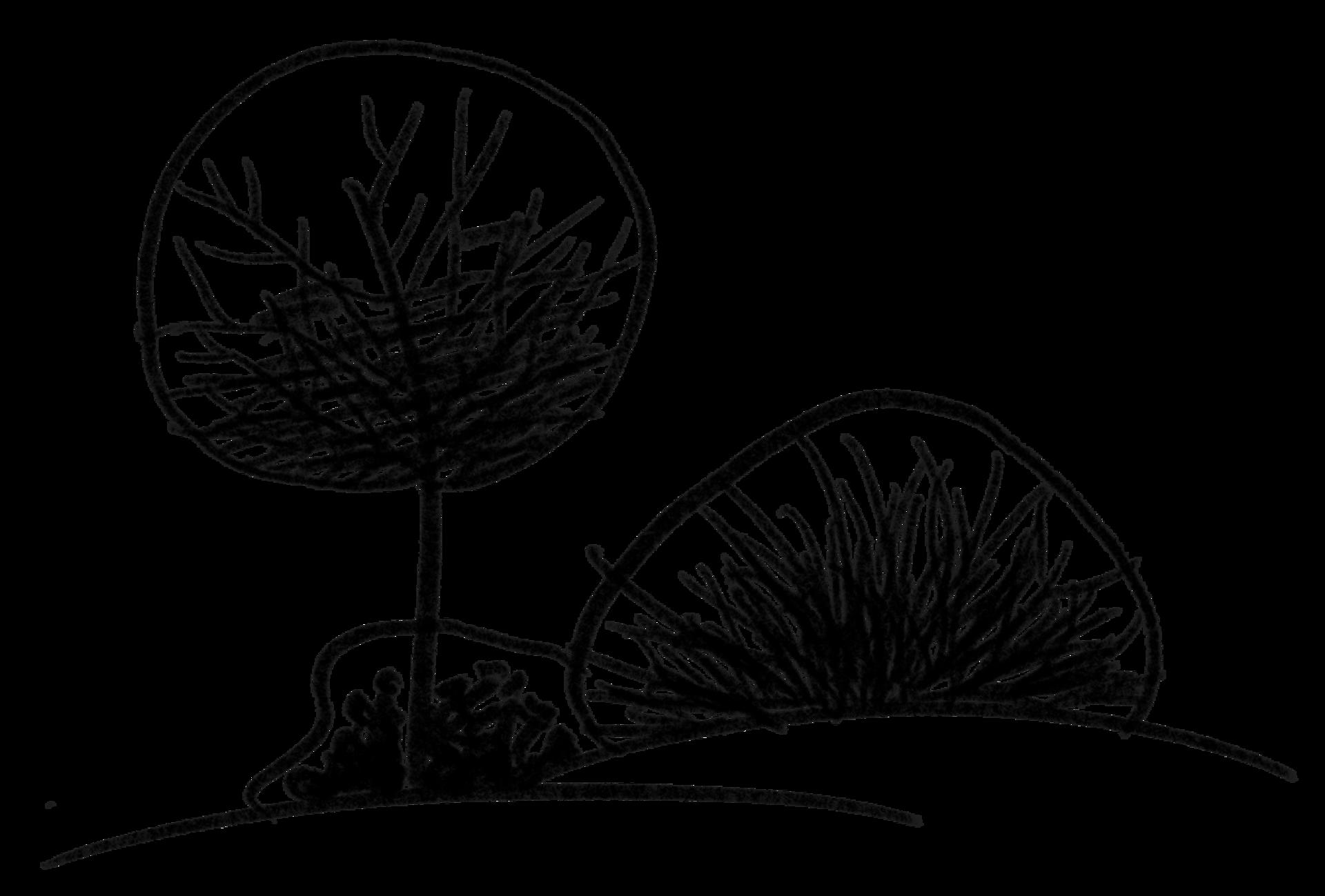 microadventure_illu_tree-3_illustration-clipping