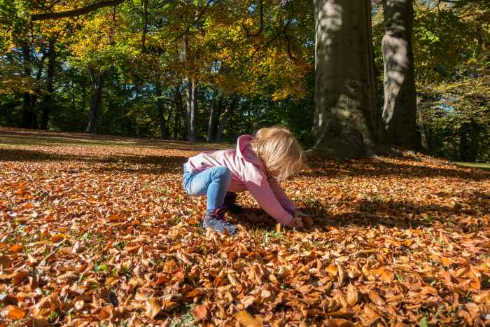 Bij regenplassen, modderpoelen en andere uitdagingen is er bij de hang naar avontuur van kinderen geen houden meer aan. Geen probleem met de bijzonder kindvriendelijk gemaakte ROBIN GTX QC. De schoen is aangepast aan de anatomie van kleine voeten en biedt dankzij de verstevigde banden en de ondersteunende LOWA MONOWRAP®-constructie de nodige stabiliteit. Om te voorkomen dat de bewegingsvrijheid daardoor zou worden beperkt, bestaan de trendy schoenen voor een groot deel uit textiel.