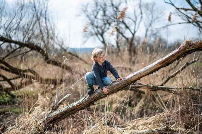 Optez pour ce modèle léger, stable et résistant. Les petits alpinistes aiment suivre leur propre chemin : les bottes LEDRO GTX MID JUNIOR les accompagneront dans toutes leurs aventures. Sur terrain plat ou en montagne, profitez de ces moments au grand air en famille.