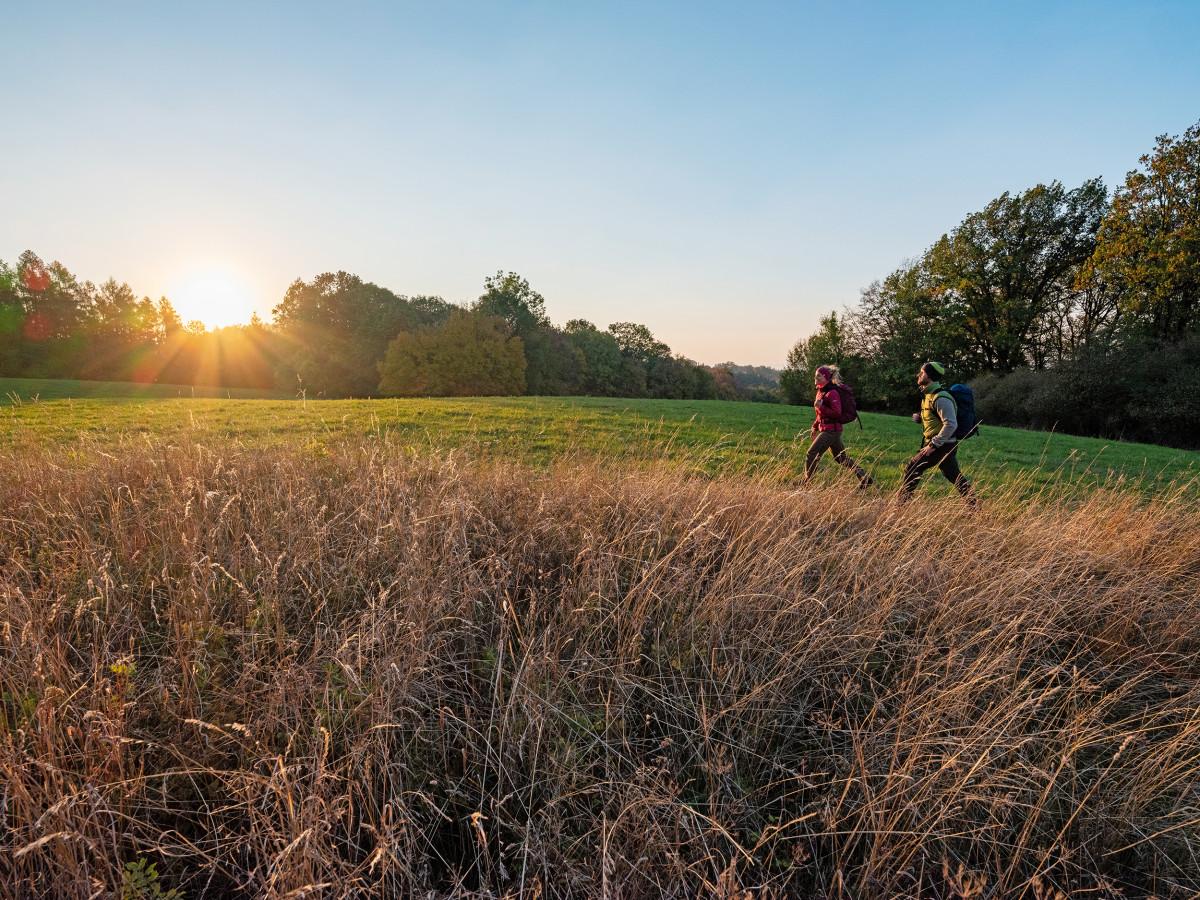 Reizen, wandelen of thuis in het bos: de PINTO LL LO kan alles en kan altijd worden gedragen. De robuuste gladleren halfhoge schoen is een chique metgezel voor alle paden en scoort met zijn soepele leren voering. LOWA vertrouwt voor zeer uiteenlopende oppervlakken op de beproefde VIBRAM® TREK-zool, die vooral in het middelgebergte en bij middelzware tochten zijn kwaliteiten bewijst.