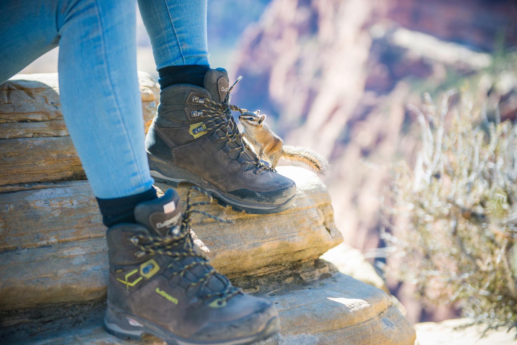 Da fällt die Entscheidung wirklich leicht: Der Trekkingschuh LADY LIGHT LL ist nicht nur in Sachen Komfort ganz vorne mit dabei, sondern punktet auch mit einer erstklassigen Ausstattung. Allein die  VIBRAM®-TRAC-LITE-II-Sohle sorgt für Wanderqualität auf unterschiedlichsten Untergründen. Speziell auf die weibliche Anatomie abgestimmt, überzeugt der Schuh durch den Einsatz von qualitativ hochwertigem Leder – Außen wie innen. Damit der Wanderschuh auch sicher zu allen Füßen passt, kommt die Zweizonenschnürung zum Einsatz.