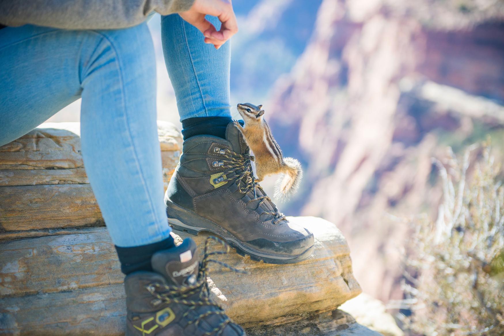 Gar nicht ladylike und trotzdem speziell für die anatomischen Bedürfnisse von Frauenfüßen entwickelt: Der LADY III GTX von LOWA. Dieser Nubukleder-Schuh ist alles andere als zurückhaltend, sondern besonders robust und abenteuerlustig. Gerade auf schwierigen Untergründen bewegen sich Abenteuerinnen dank der  VIBRAM®-NATURAL-Sohle mit ausgeprägter Front- und Absatzprofilierung ausgesprochen souverän. Bei lästiger Nässe ist Verlass auf die integrierte GORE-TEX-Membran. Ein Schuh also für die Herausforderungen bei langen Wanderungen und Trekkingtouren im Mittel- und Hochgebirge.