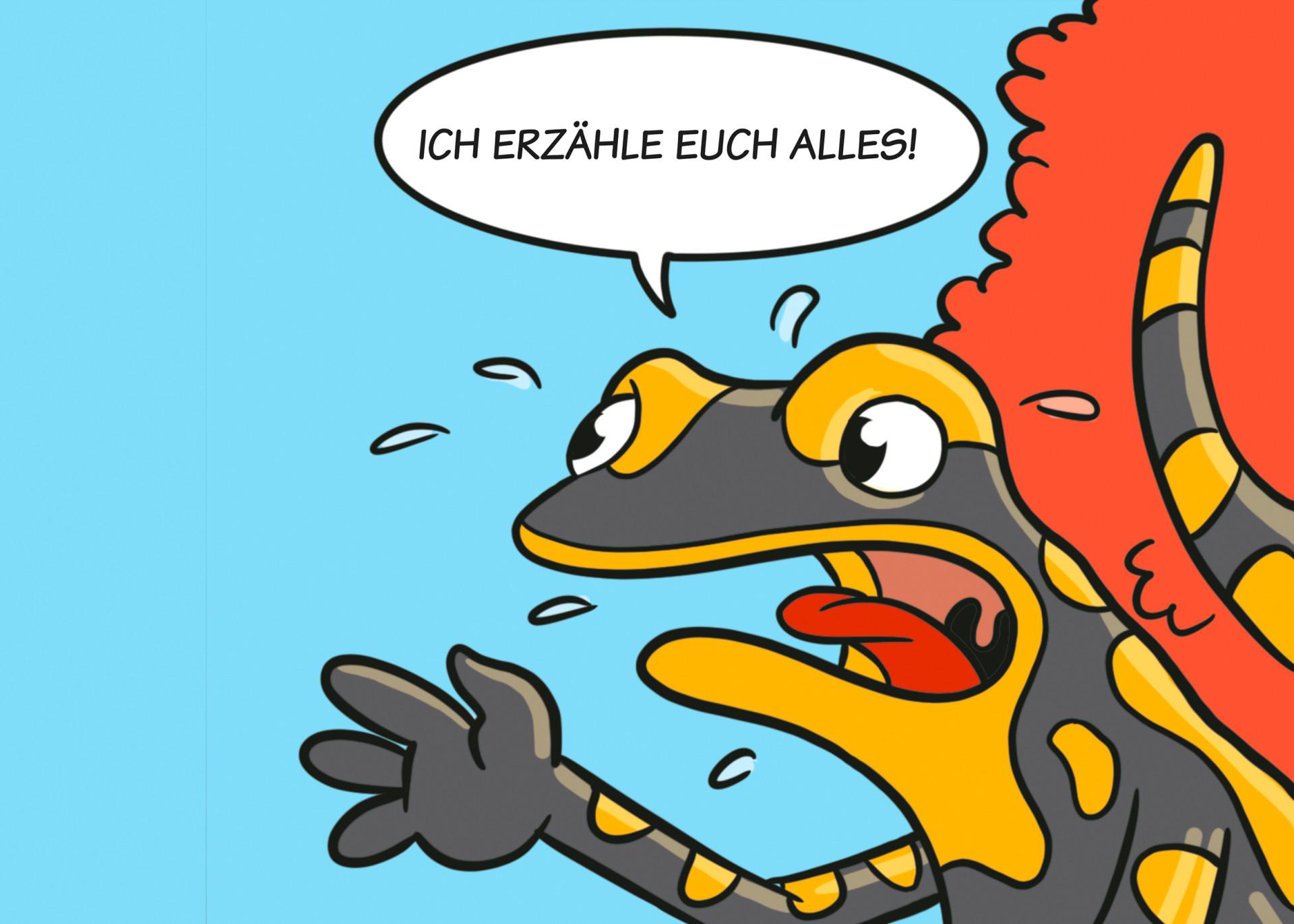 bild_9_salamander