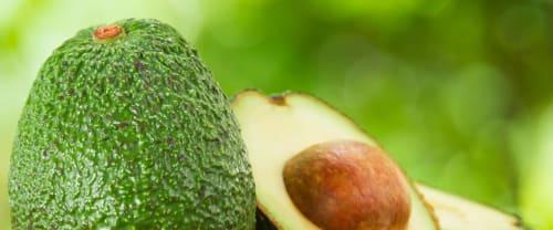 Proprietà e usi dell'avocado in cucina e in cosmesi