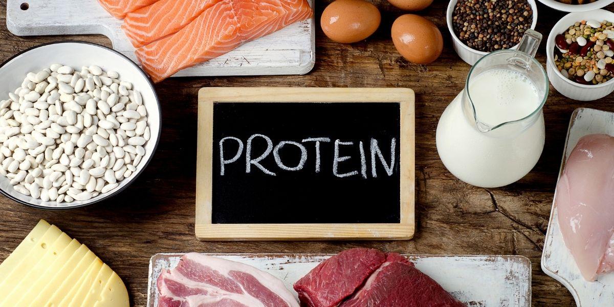 Alimenti proteici per l'allenamento: scopri i migliori
