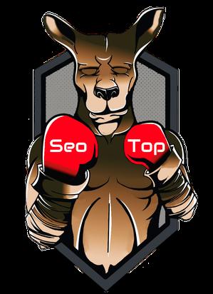 seo-top-logo