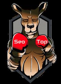 Seo Top